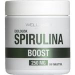 WellAware Eko Spirulina Tabletter 300 st