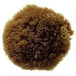 Hydrea London Natural Grass Sea Sponge