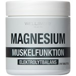 WellAware Magnesium 210 tabletter