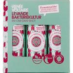 Renée Voltaire Levande Bakteriekultur-shot 6 x 80 ml