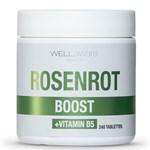 WellAware Health Rosenrot + B5 240 minitabletter