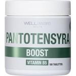 WellAware Health B5 Pantotensyra 180 minitabletter