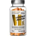 BioSalma Magnesium 350 mg + Gurkmeja Ingefära 100 st kapslar