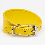 Collar of Sweden Yellow Leather Collar Small Wide hundhalsband
