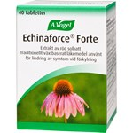 Echinaforce Forte 40 tabletter
